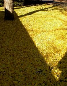 Amber Gingko Carpet